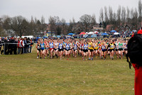 10 Inter Counties Cross Country